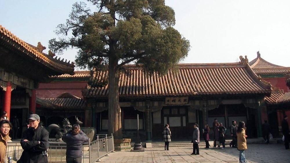 Palace of gathered elegance