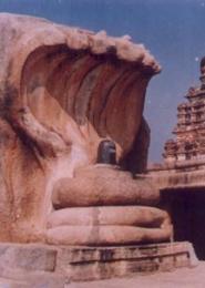 The Saptaphani Nagendra