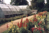 Lloyd Botanical Gardens